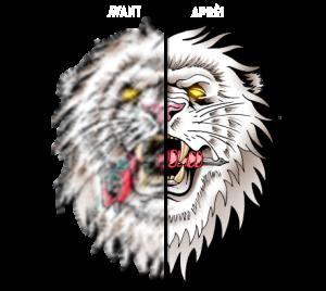 vectorisation-logo-avant-après