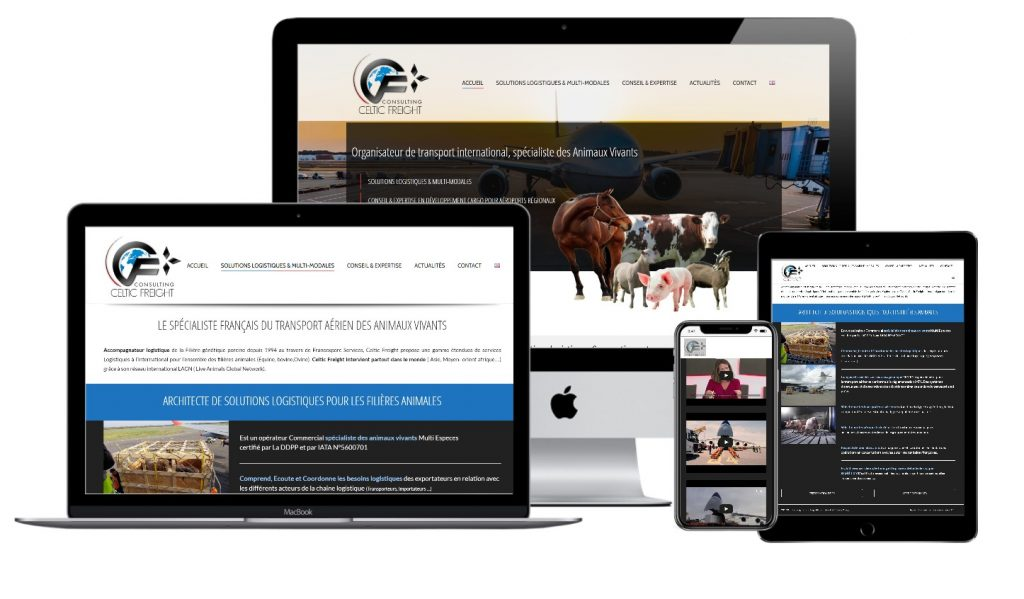 Celtic Freight Consulting creation site internet